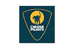 Ciesse-Piumin-logo